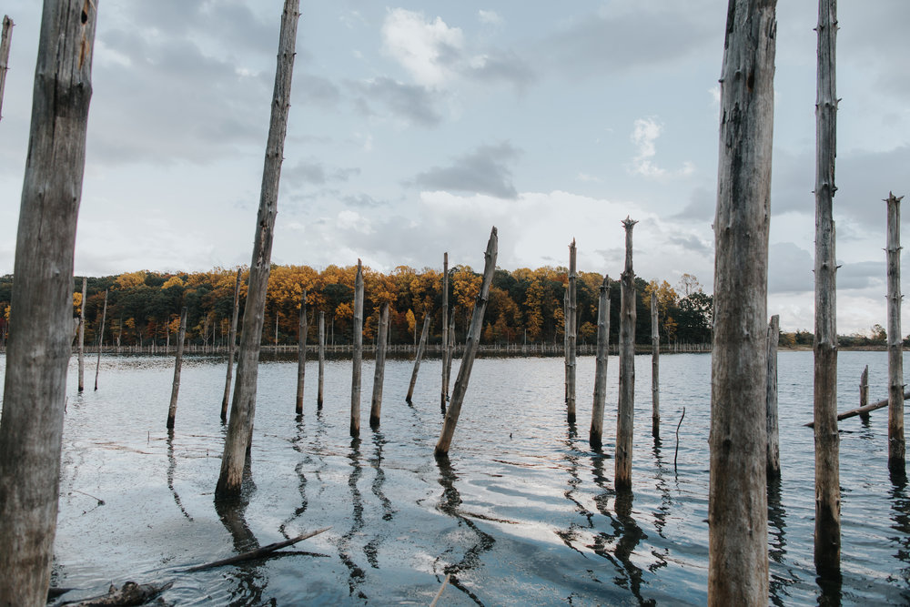 merill-creek-reservoir-nature-photography
