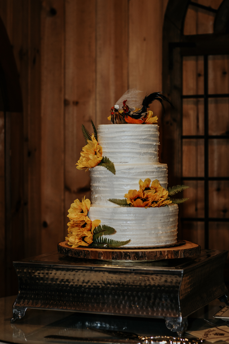 kings-mills-wedding-reception-photography-cake
