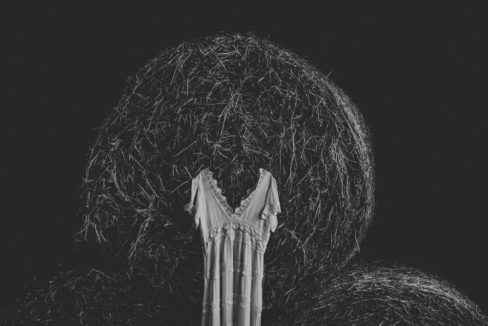 woods-edge-alpaca-farm-wedding-dress-photography