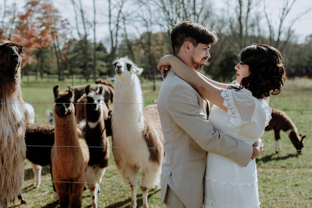woods-edge-alpaca-farm-wedding-photography-2