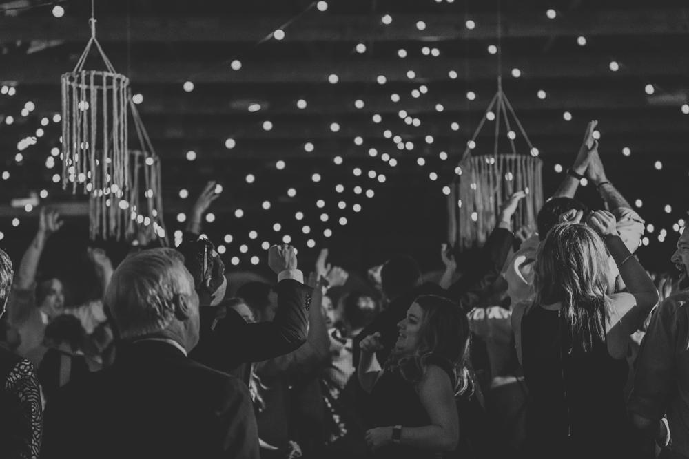 woods-edge-wools-alpaca-farm-wedding-reception-photography-6