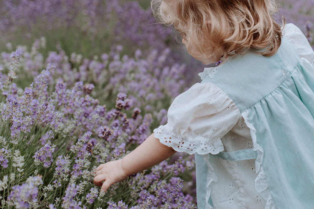 peace-valley-lavender-farm-natural-photography-candid