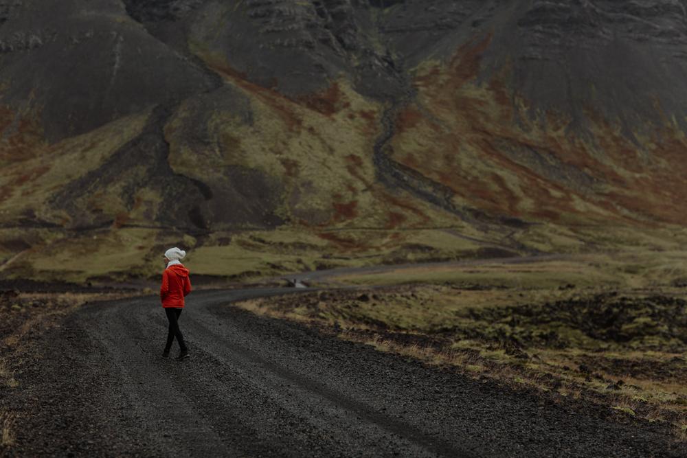 berserkjahran-lava-field-iceland-travel
