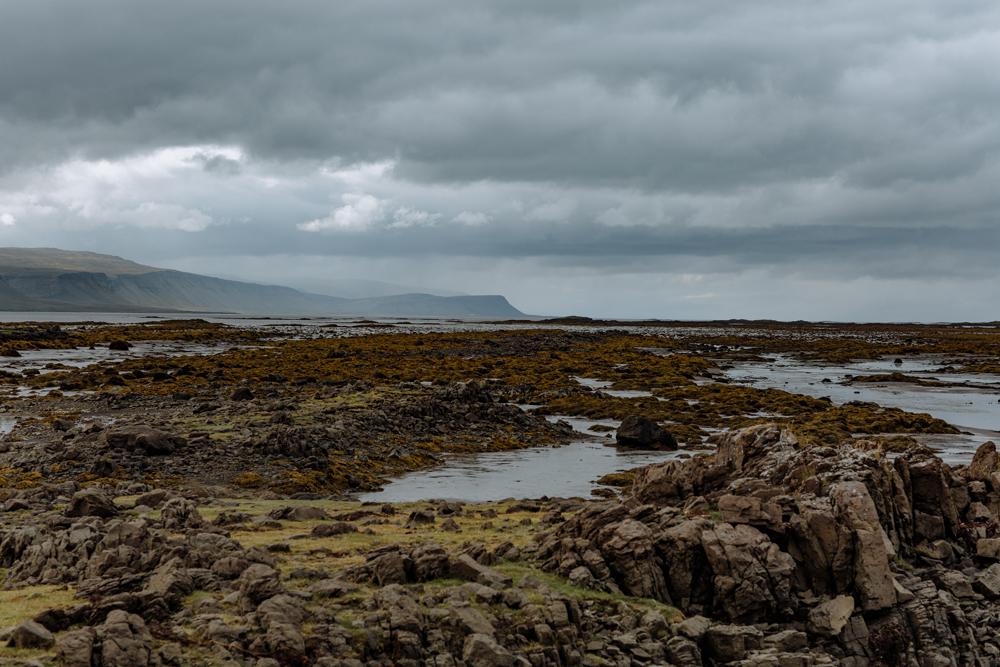 westfjords-iceland-photography-3