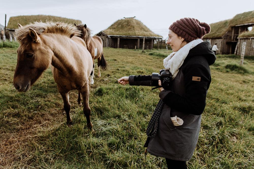 icelandic-horses-skaftafell