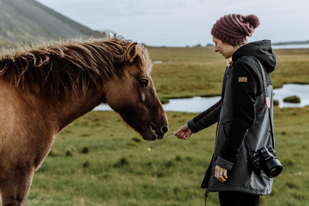 icelandic-horse-viking-movie-set-adventure-travel-2