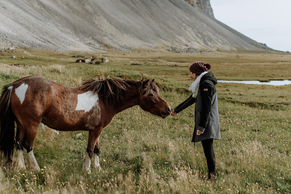 icelandic-horse-viking-movie-set-adventure-travel-10