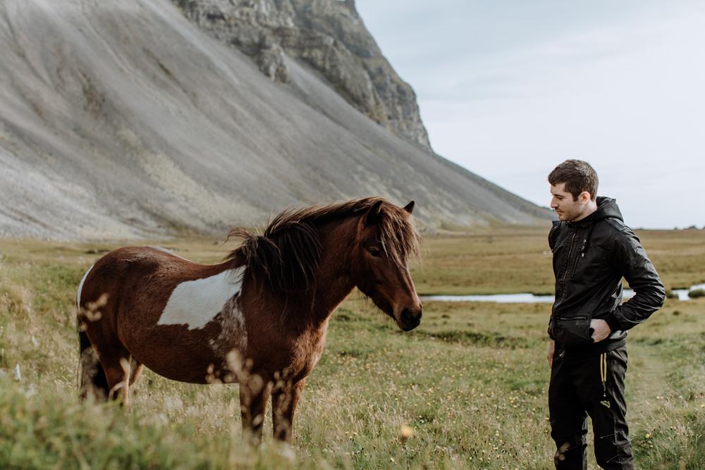 icelandic-horses-vetrahorn