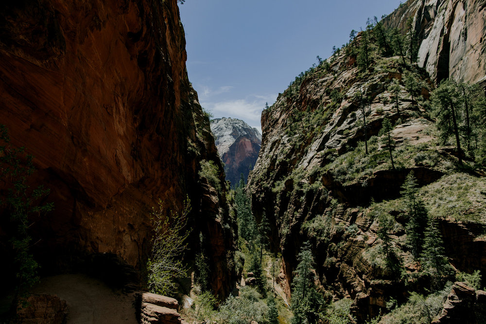 zion-national-park-landscape-travel-photography-1