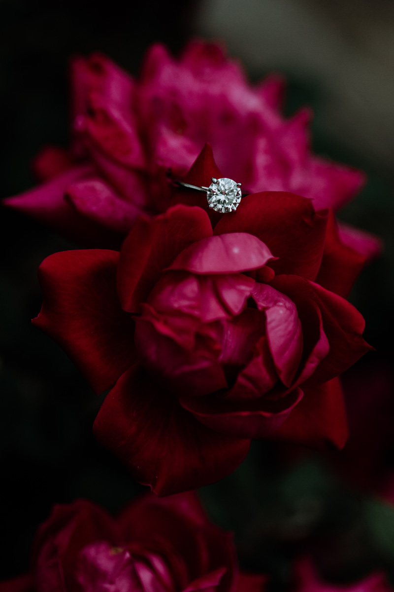 lehigh-valley-photography-ring-engagement-shot