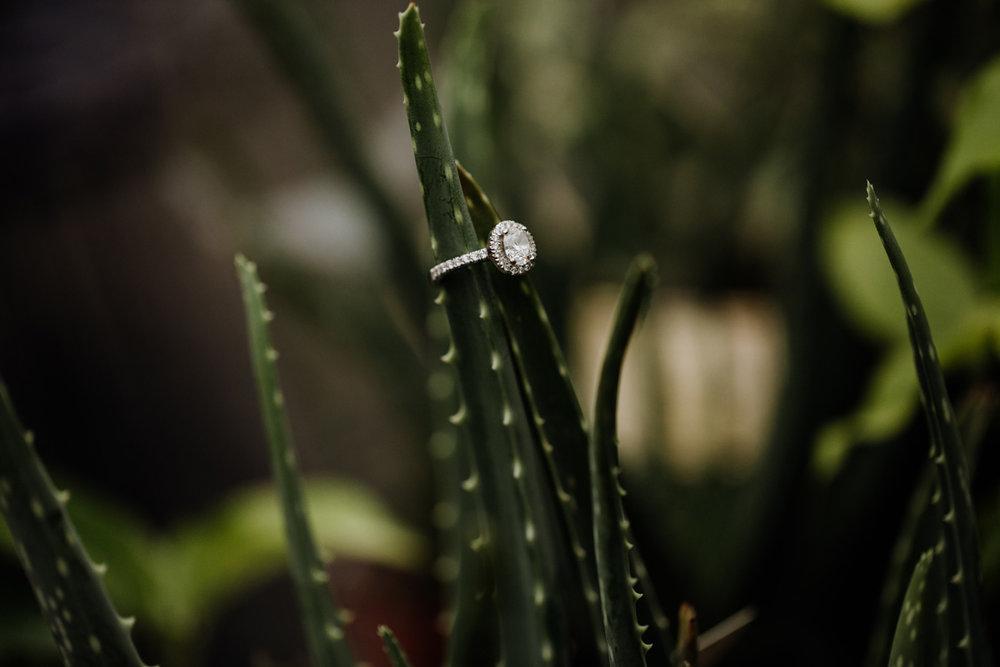 greensgrow-farm-engagement-photography-9