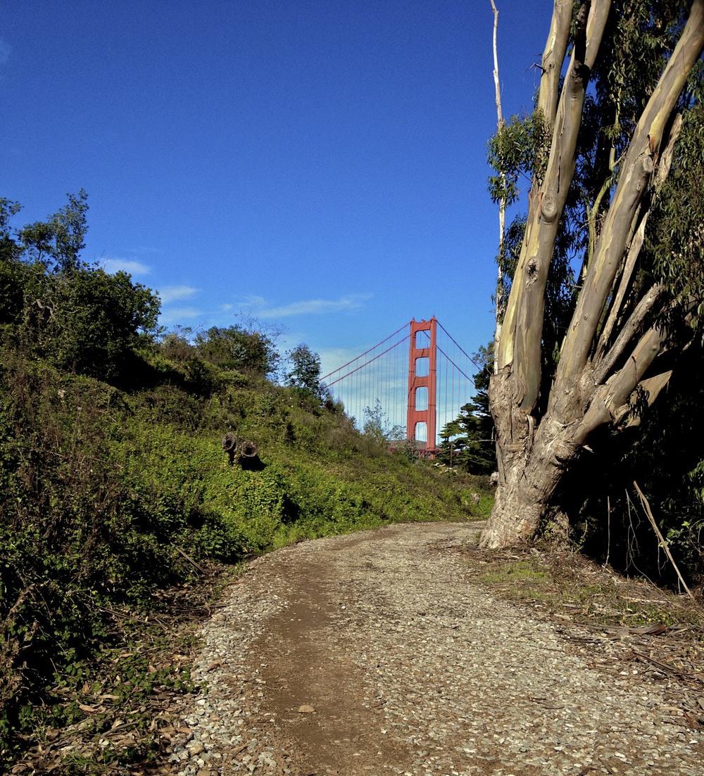 crisy feild trail.jpg