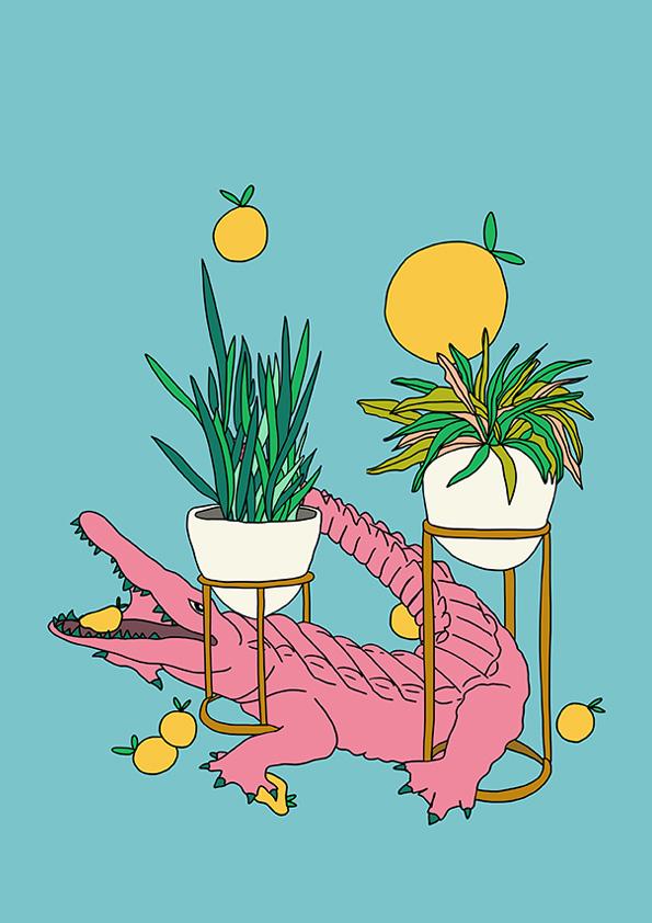 Designani-Croc.jpg