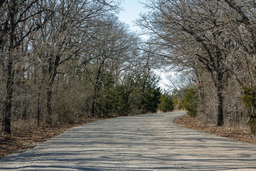 Road in the woods.jpg