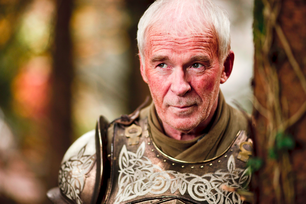 sir barristan.png