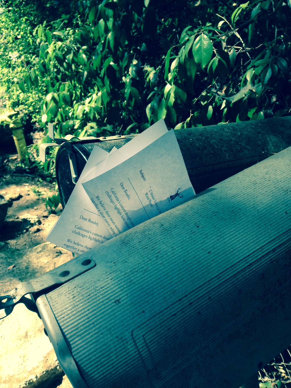Stag Hunt's by-hand-mail delivery random survey of La Canada residents on local water issues.