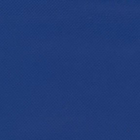 BlueVinyl.jpg