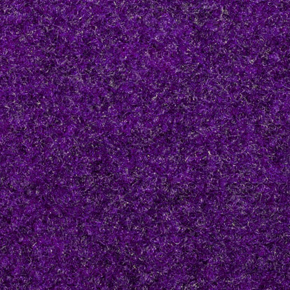 PurpleCarpet.jpg