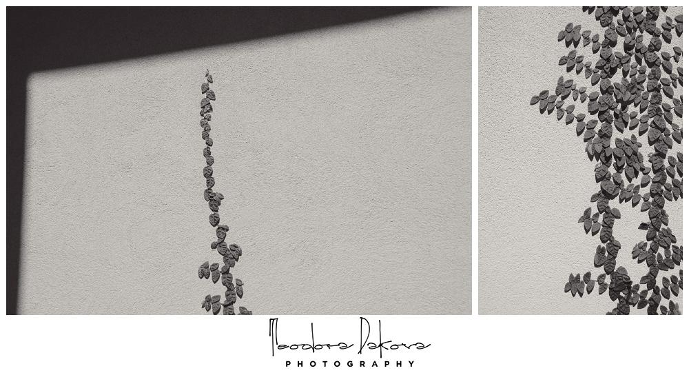 Teodora Dakova Photography-8885.jpg