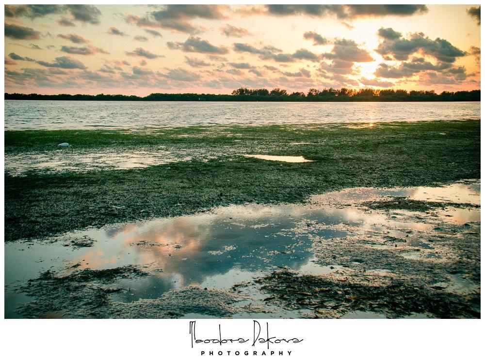 Teodora Dakova Photography-8957.jpg