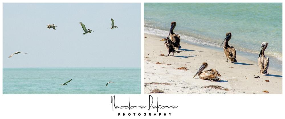 Teodora Dakova Photography-9539.jpg