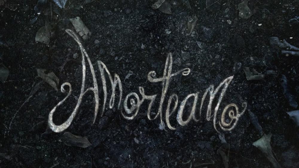 Logo Amorteamo.jpg