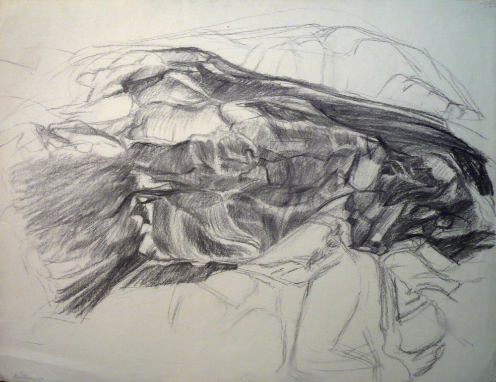 Rock Forms , 1955 Charcoal 18.875 x 23 in