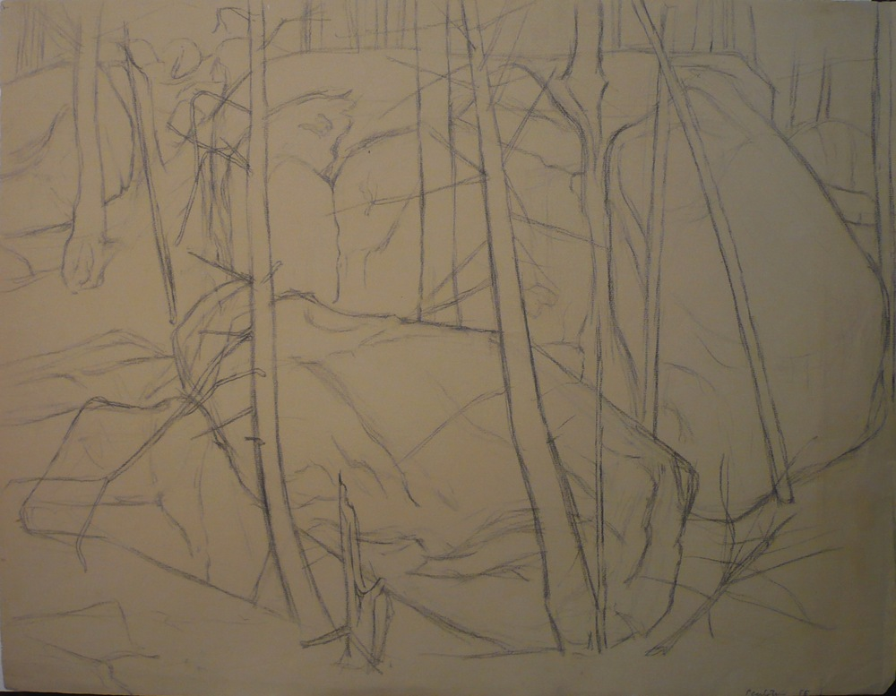 Forest Landscape , 1956 Charcoal 19x25.625