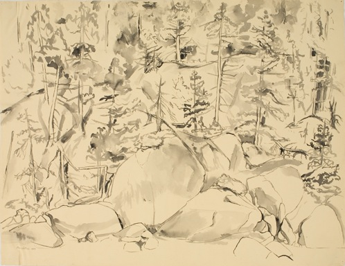 Study for Oil Painting: Forest Landscape , 1956 Black watercolor wash 19 x 24.5 in