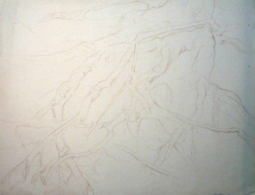 Untitled , 1956 Conte Crayon 19 x 24.625 in
