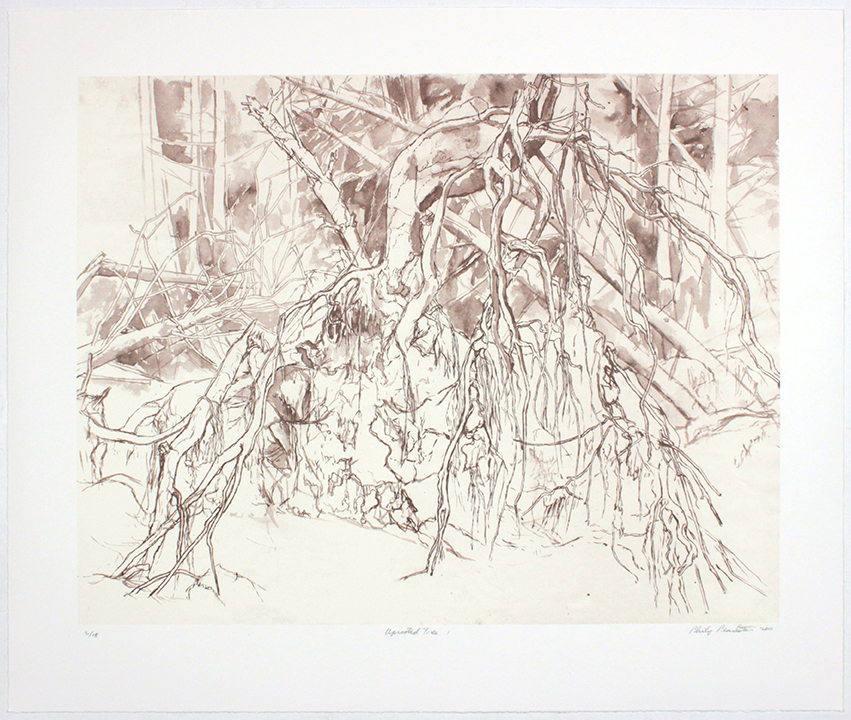 Uprooted Tree I , 2011 From a portfolio of 10 prints Laser prints 20 1/2 x 24 1/2 inches