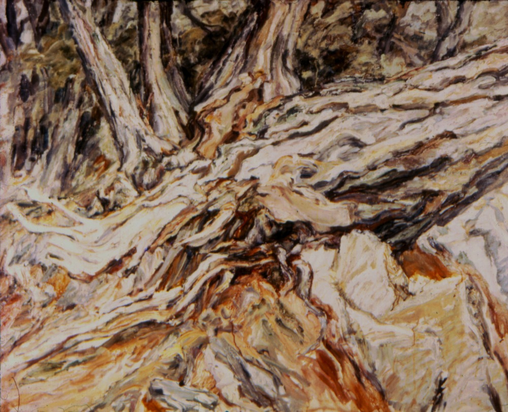 Roots (fallen tree) , 1957 Oil on canvas 36 x 44 in