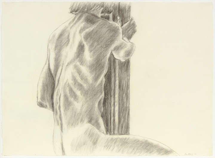 Male Model, Back View,  1986 Charcoal on Paper 19 x 26 in