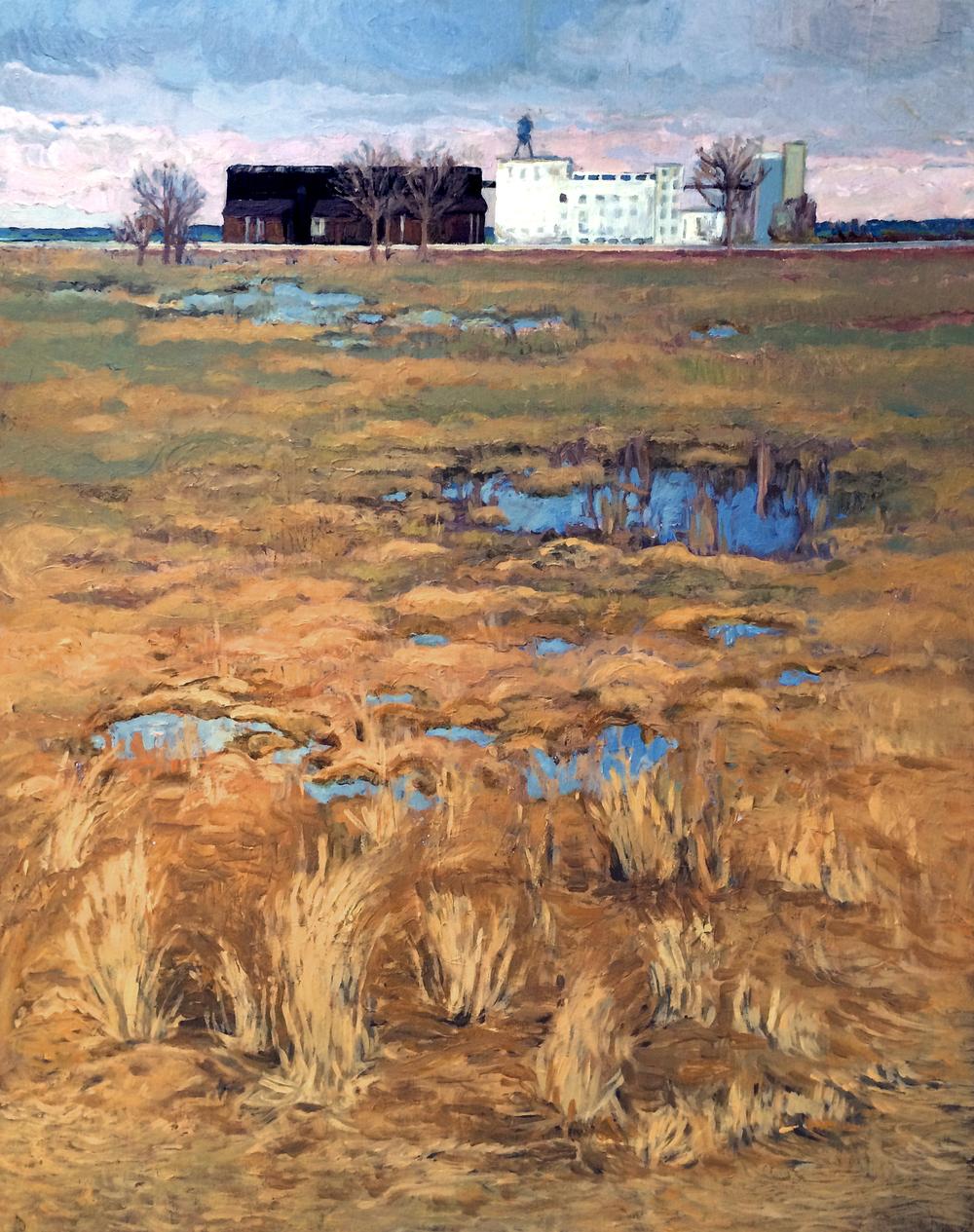A field in Buffalo