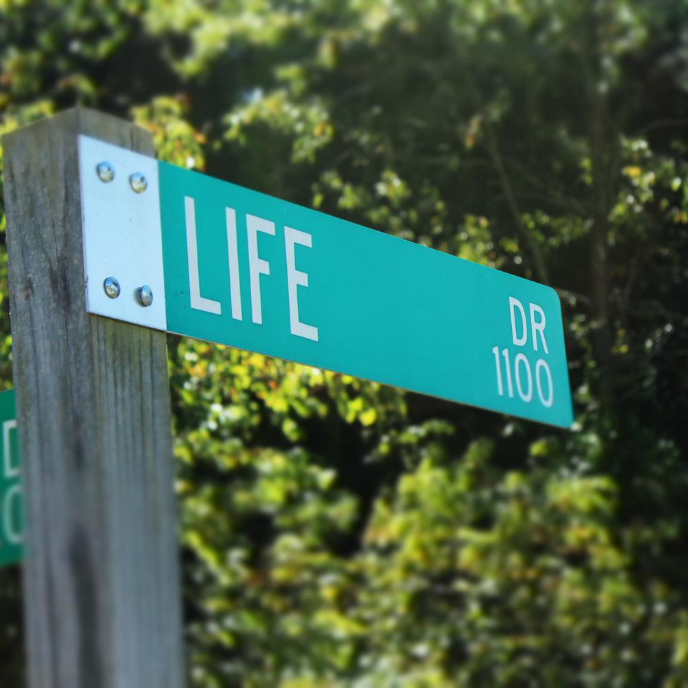 Life Drive.jpg