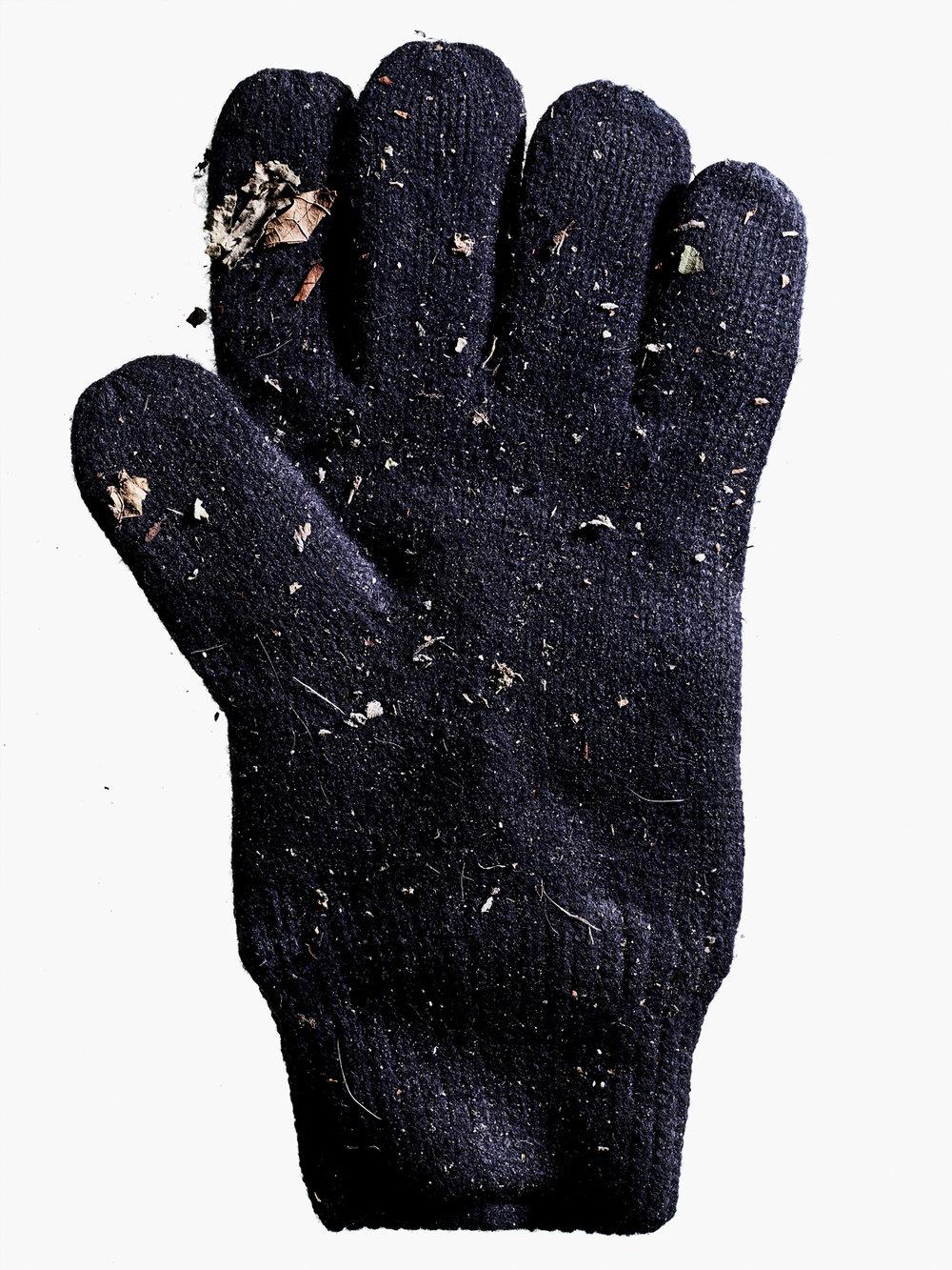 20171201 Gloves-112621.jpg