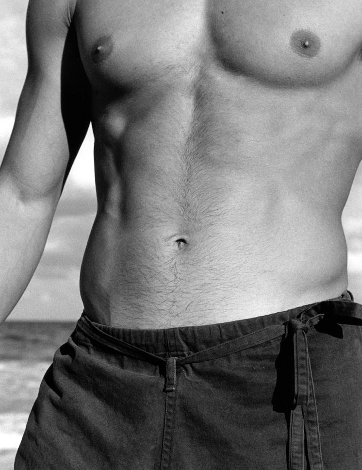 torso2.jpg