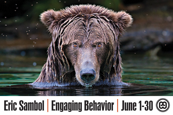 Engaging-Behavior-Thumbnail1.jpg