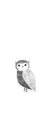 Footer Owl 2b.png