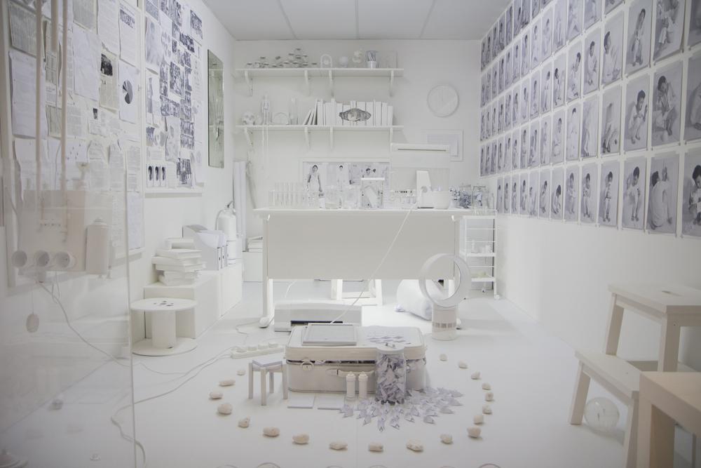 Rattus Norvegicus installation piece(2012)