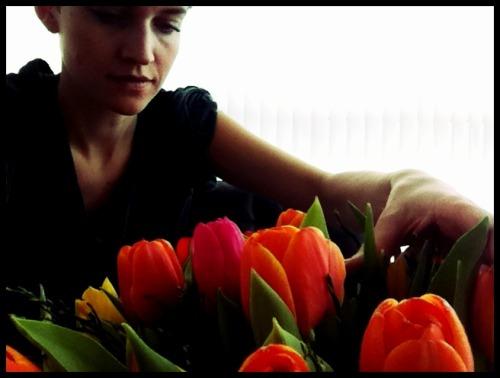 Anna_Lidstrom_tulip1.JPG