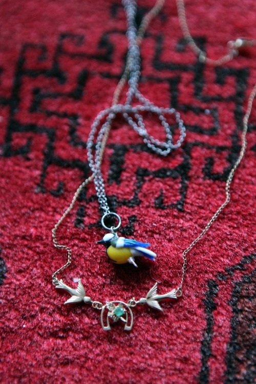 Anna_Lidstrom_songbird1.JPG