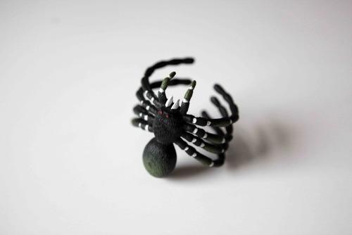 Anna_Lidstrom_Spider22.jpg