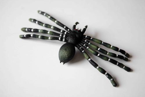 Anna_Lidstrom_Spider11.jpg