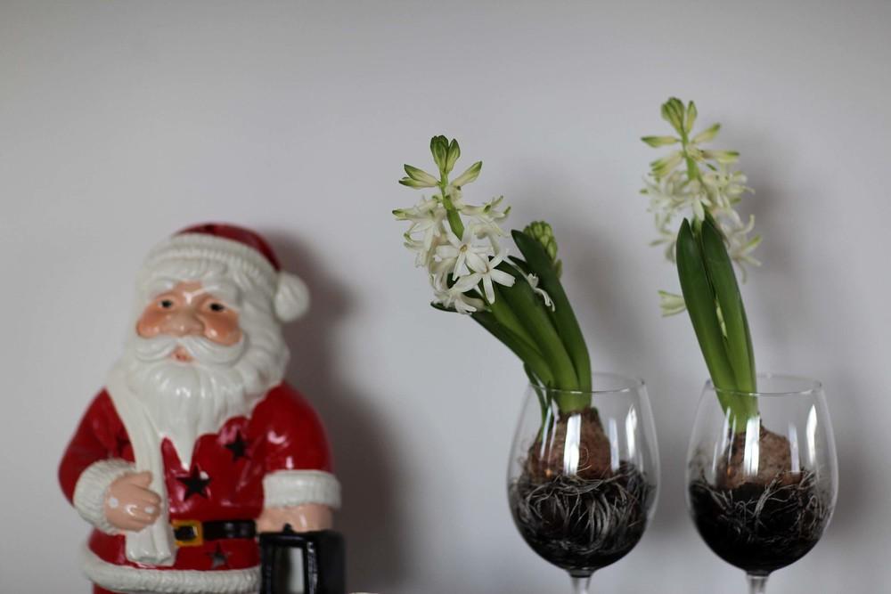 Anotherblog_Anna_Christmasdetails2.JPG