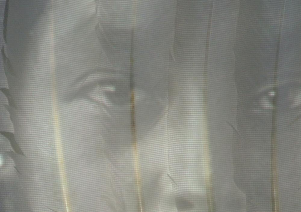 Hattie Tom's eyes behind feathers