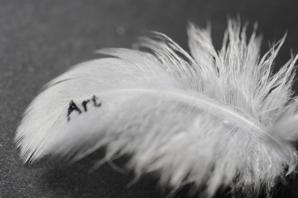 Feather art 2.jpg