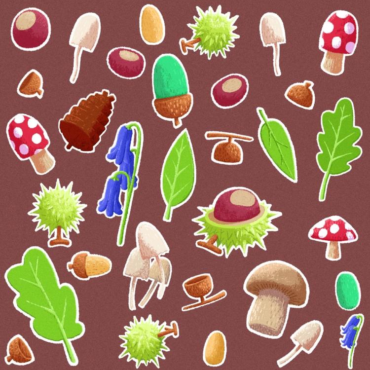Forest Sport Illustrations