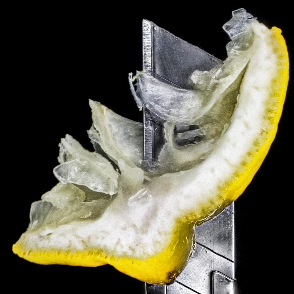 fruit_5.jpg