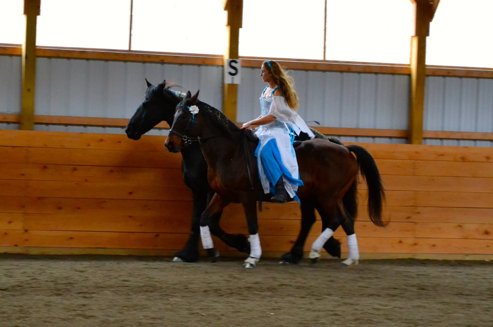Douwe and Rovandio working together in their routine. Douwe was a little lazy for the canterwork but they had some nice transitions together. See the video at the bottom. Photo taken by Laurie Harvey's assistant Kaitlyn.